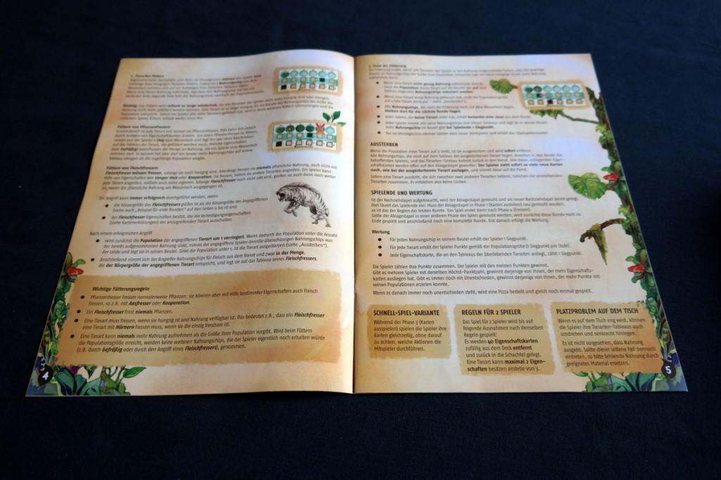 rules Evolution Brettspiel Kartenspiel Boardgame Cardgame